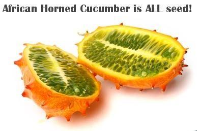 african horned cucumber fruit melon all seed.jpg