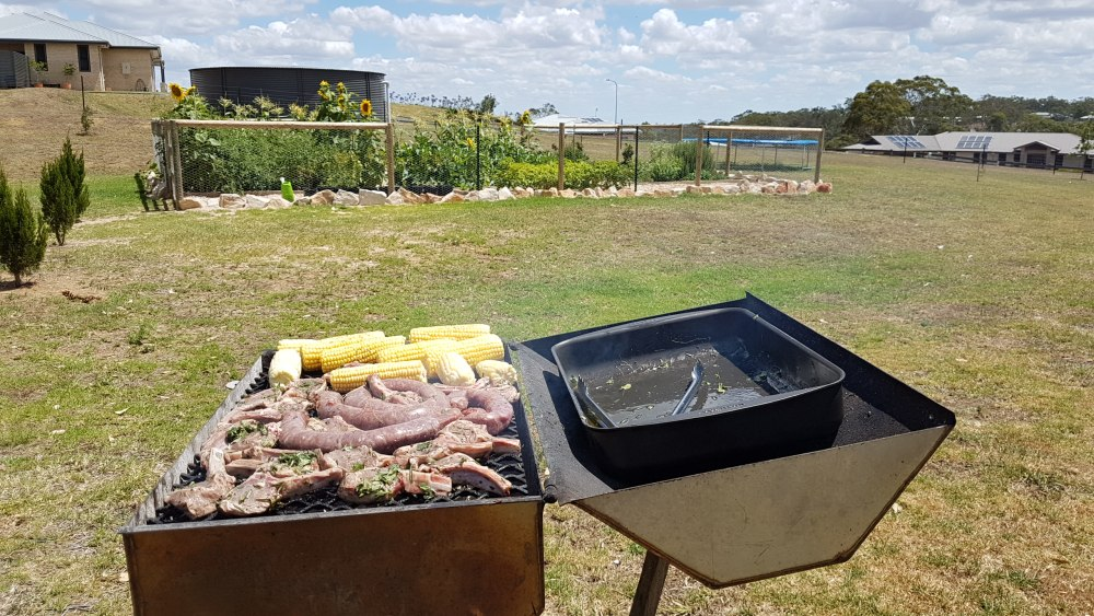 after vegetable patch rabbit fence.jpg