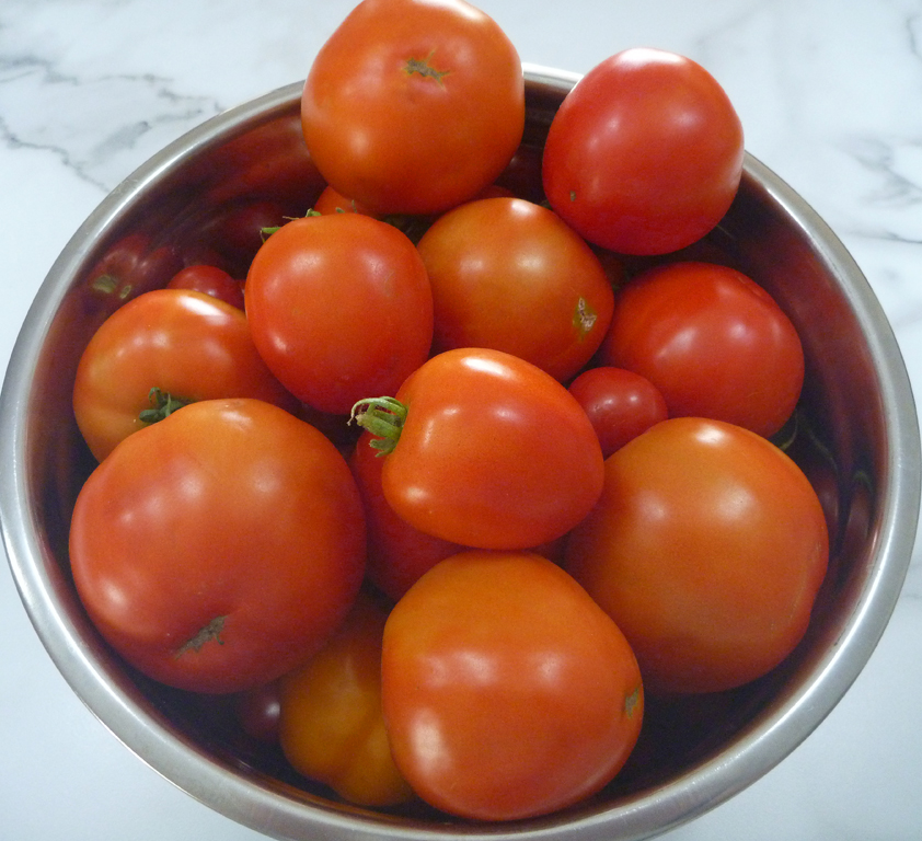 Apollo-Tomatoes.jpg