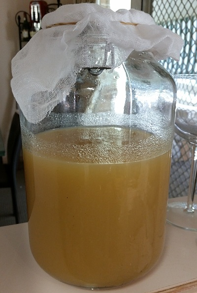 apple cider vinegar making strained out solids.jpg