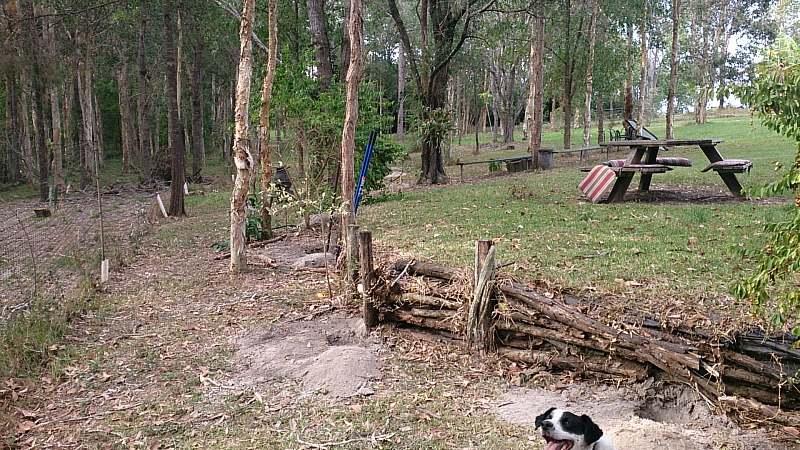 before shot of picnic area.jpg