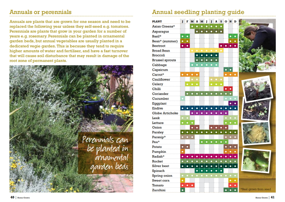 bendigo vegetable growing chart.jpg