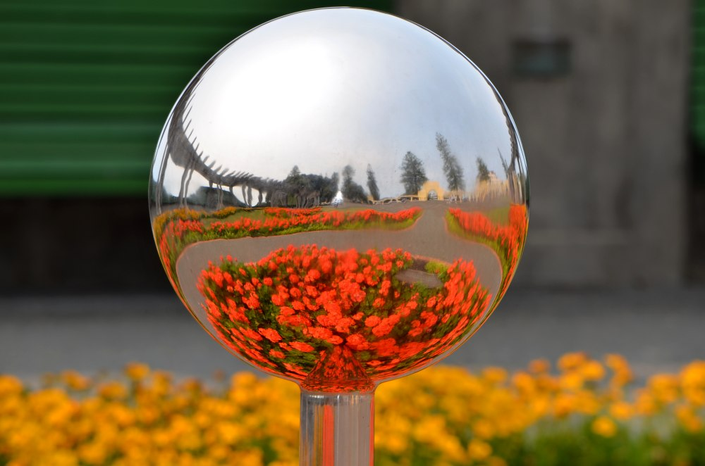 Chrome dome garden New Zealand.jpg