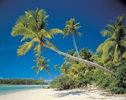 Coconut Lean.jpg