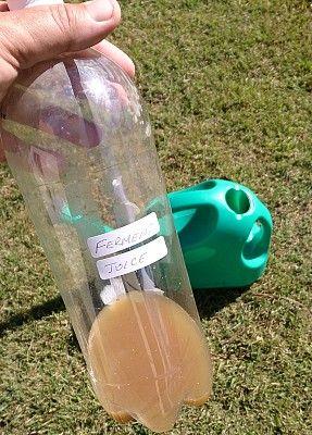 compost fermentation juice in bottle.jpg