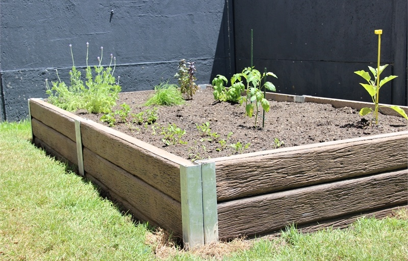 Raised Garden Beds Termites
