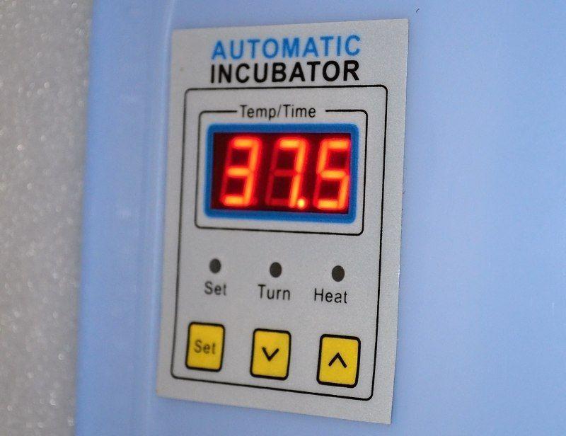 control panel incubator Chinese.jpg