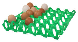 example of egg tray.jpg