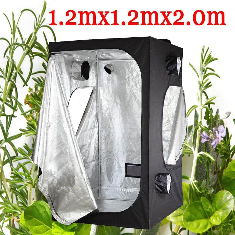 hydroponics grow tent.jpg