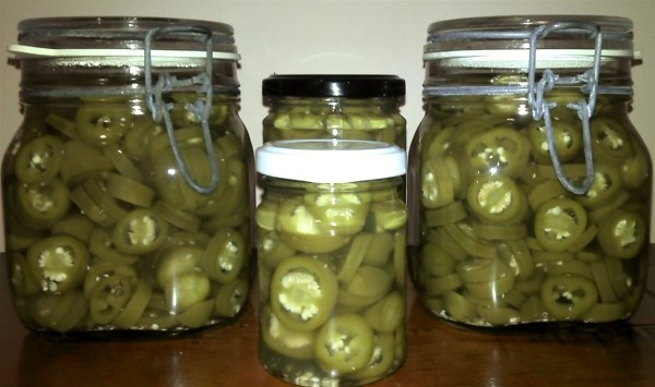 Jalapeno pickled chillies.jpg