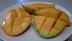 Mango glenn cut open ready for eating 250.jpg