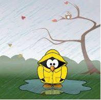 miserable rain.jpg