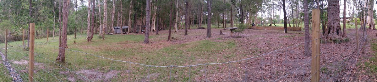 pano of chicken paddock park dog proof fence full size.jpg