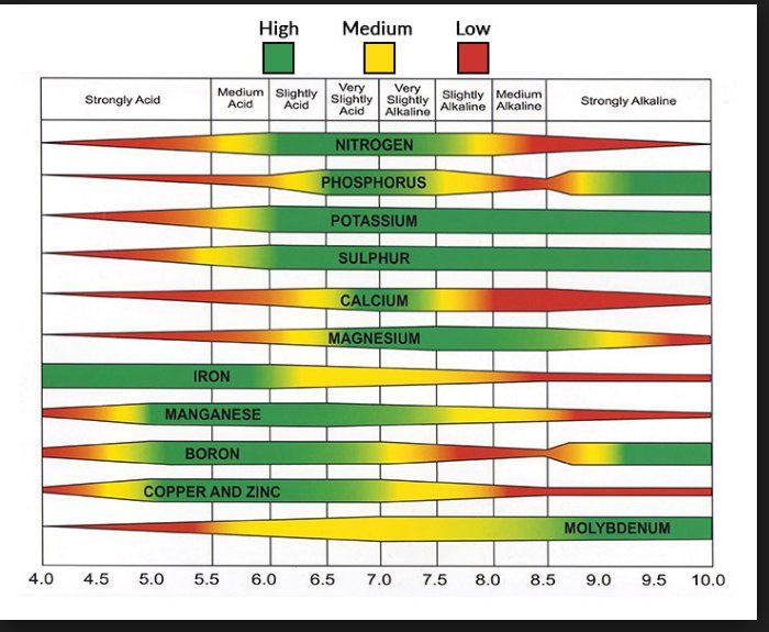 pH chart 1.jpg