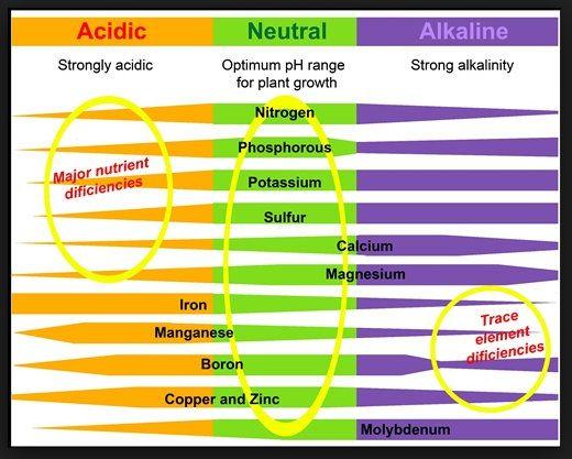 pH chart 4.jpg