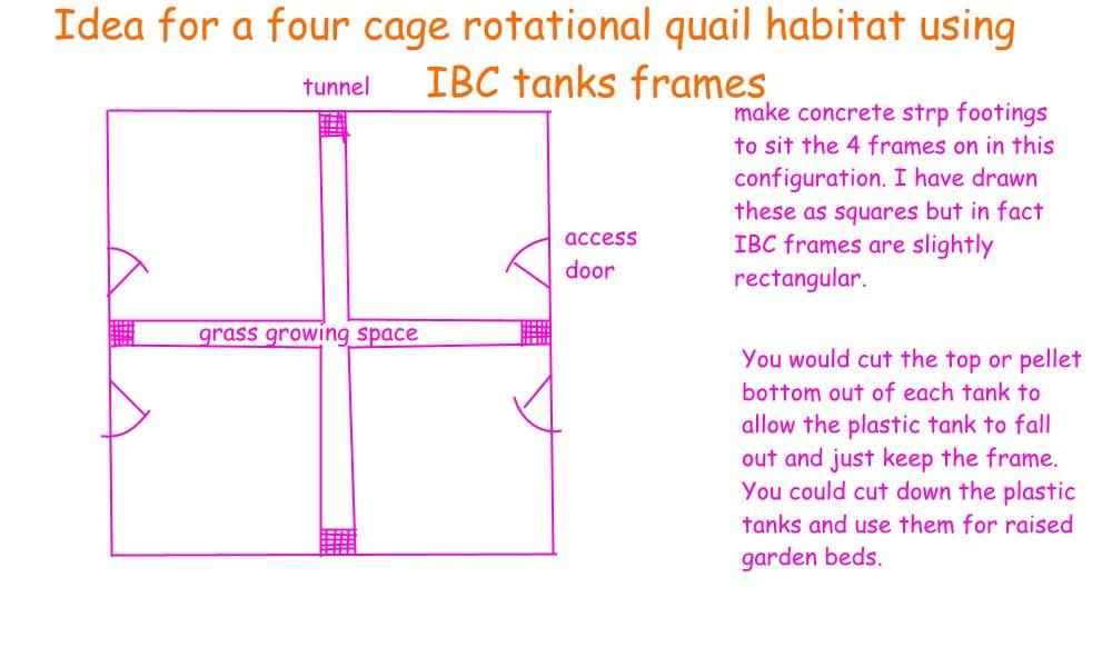 quail habitat.jpg