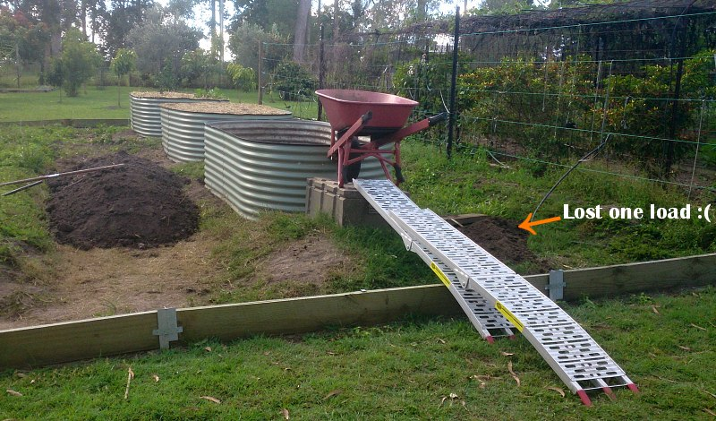 raised garden bed move.jpg