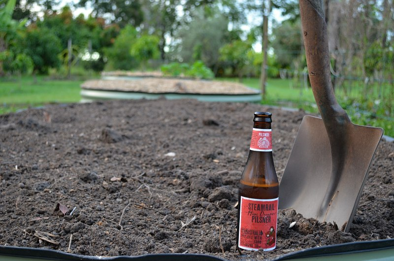 raised garden beds with pilsner.jpg