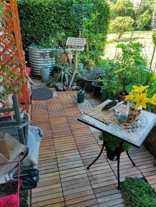 RT garden 2.jpg