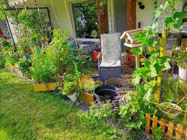 RT garden 3.jpg