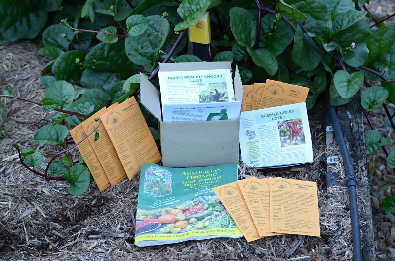 seed packets from Green Harvest.jpg