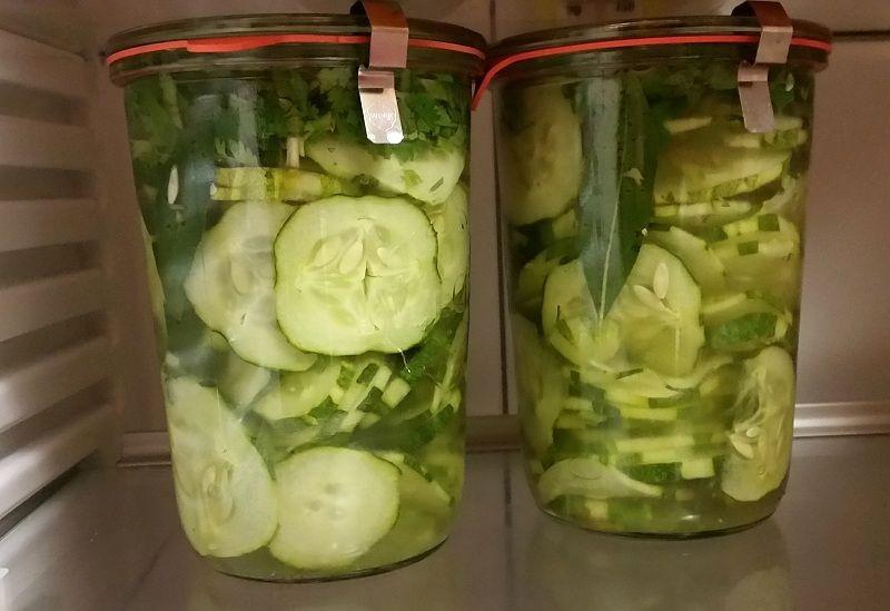 sliced pickled cucumber in lemon and vinegar coriander in fridge.jpg