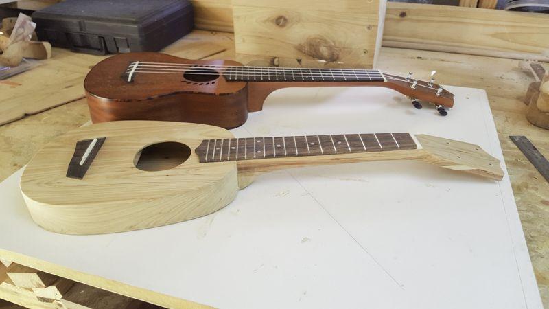 ukulele_compared1.jpg