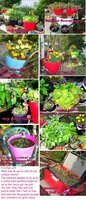 flower containers collage.jpg
